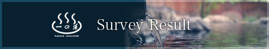 Survey Result